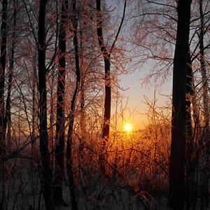 Кончается короткий зимний денек...