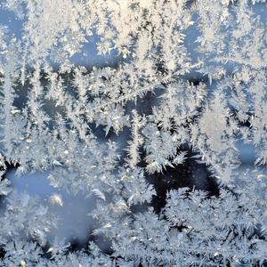 Мороз украсил окна