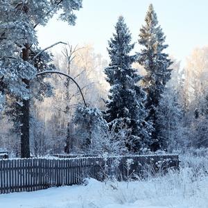Уютная зима