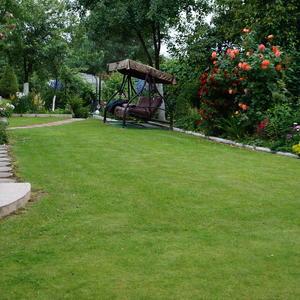 Красивый газон - самый важый элемент в создании современного сада