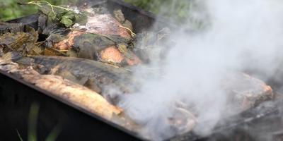 Копчение скумбрии на открытом огне. Вкусно и быстро