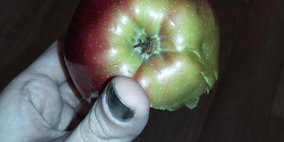 Какого сорта это яблоко?