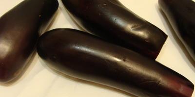 Рулетики из баклажанов с мясом