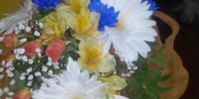 Подскажите, пожалуйста, названия этих цветов!