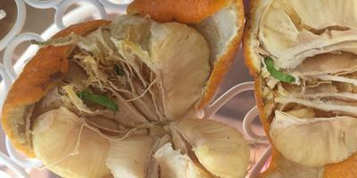 Семена комнатного мандарина проросли прямо в плодах. Что посоветуете? Посадить или выбросить?