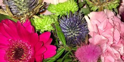 Помогите определить названия растений в букете