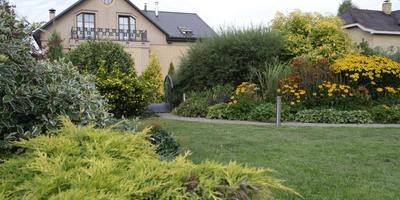 Мой прекрасный сад в Стрельне!