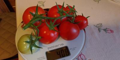 Пора на весы