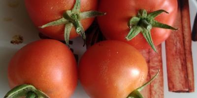 Итог по Любаше N2 и новый дом для конкурсных томатов в следующем году