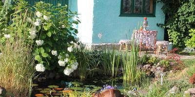 Водная гладь пруда - благодать для сада