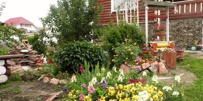 Сад нашей семьи