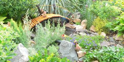 У нас в саду тоже есть любимый всеми уголок, с которого и началось всё преображение нашего участка