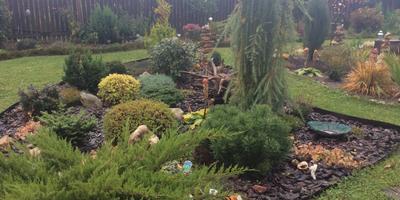 Мой сад - моя воплощённая мечта