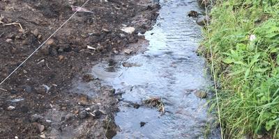 Как правильно укрепить берега ручья камнем и устроить террасы для растений?
