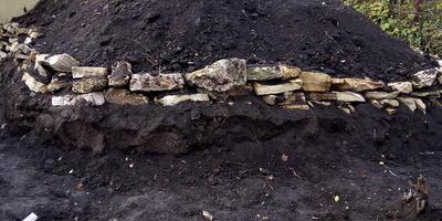 Что и как правильно посадить на насыпном погребе?