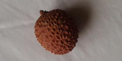Что за фрукт появился на прилавках?