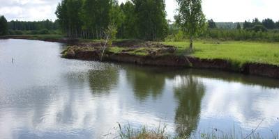 Фотографии и отзывы о коттеджном поселке «Покровская слобода» (Раменский р-н МО)