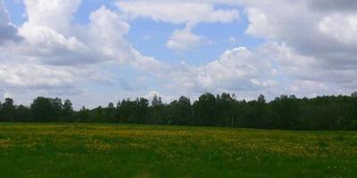Фотографии и отзывы о коттеджном поселке «Панорамный» (Истринский р-н МО)
