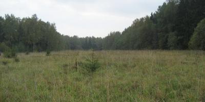 Фотографии и отзывы о коттеджном поселке «Варавино» (Сергиево-Посадский р-н МО)