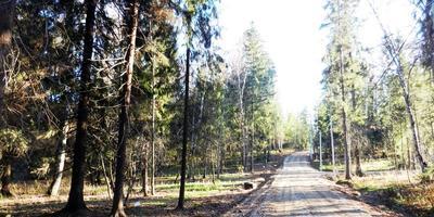 Фотографии и отзывы о коттеджном поселке «Лесной родник» (Дмитровский р-н МО)
