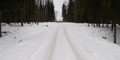 Фотографии и отзывы о коттеджном поселке «Лесная усадьба» (Дмитровский р-н МО)