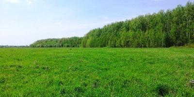 Фотографии и отзывы о коттеджном поселке «Першино» (Раменский р-н МО)