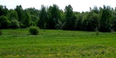 Фотографии и отзывы о коттеджном поселке «Успенское-17» (Одинцовский р-н МО)