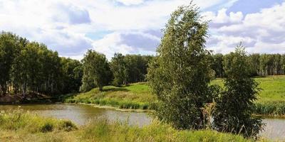 Фотографии и отзывы о коттеджном поселке «Аквамарин» (Ступинский р-н МО)