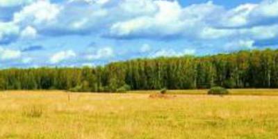 Фотографии и отзывы о коттеджном поселке «Тиерра-Град» (Раменский р-н МО)