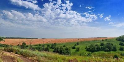 Фотографии и отзывы о коттеджном поселке «Яхрома Ривер» (Дмитровский р-н МО)