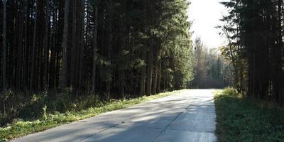Фотографии и отзывы о коттеджном поселке «Наполеон» (Подольский р-н МО)
