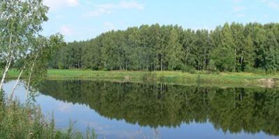 Фотографии и отзывы о коттеджном поселке «Загорянский» (Щелковский р-н МО)