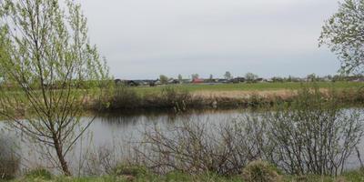 Фотографии и отзывы о коттеджном поселке «Лисицыны лужки» (Раменский р-н МО)