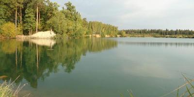 Фотографии и отзывы о коттеджном поселке «Сосновый край» (Раменский р-н МО)