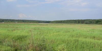 Фотографии и отзывы о коттеджном поселке «Орешники» (Коломенский р-н МО)