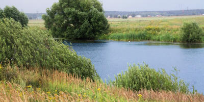 Фотографии и отзывы о коттеджном поселке «Озерный» (Воскресенский р-н МО)