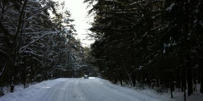 Фотографии и отзывы о коттеджном поселке «Чеховские сосны» (Чеховский р-н МО)
