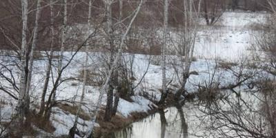 Фотографии и отзывы о коттеджном поселке «Каширские озера» (Каширский р-н МО)