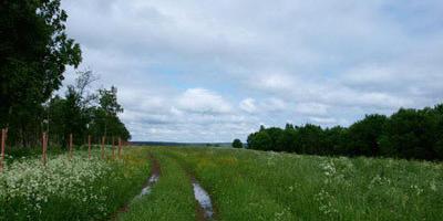 Фотографии и отзывы о коттеджном поселке «Ольховка» (Клинский р-н МО)