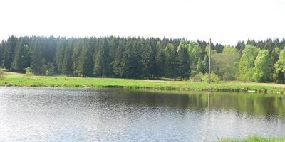 Фотографии и отзывы о коттеджном поселке «Голиково» (Солнечногорский р-н МО)