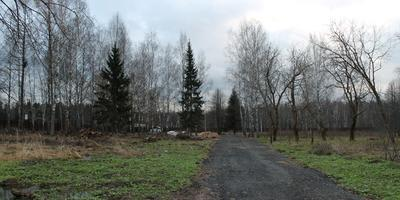 Фотографии и отзывы о коттеджном поселке «Кстинино» (Пушкинский р-н МО)