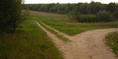 Фотографии и отзывы о коттеджном поселке «Ладога» (Наро-Фоминский р-н МО)