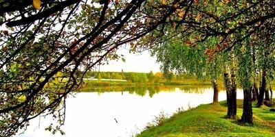 Фотографии и отзывы о коттеджном поселке «Холмогорье» (Раменский р-н МО)