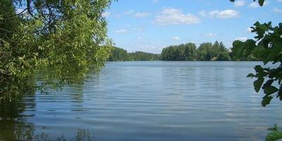 Фотографии и отзывы о коттеджном поселке «Левашово» (Можайский р-н МО)