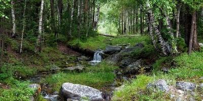 Фотографии и отзывы о коттеджном поселке «Два ручья» (Клинский р-н МО)