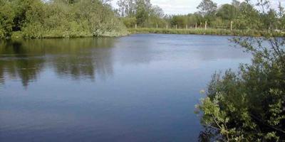 Фотографии и отзывы о коттеджном поселке «Малиновка» (Наро-Фоминский р-н МО)