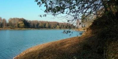 Фотографии и отзывы о коттеджном поселке «Озерный край 2» (Истринский р-н МО)