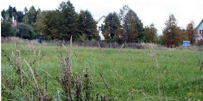 Фотографии и отзывы о коттеджном поселке «Рузская сказка» (Рузский р-н МО)