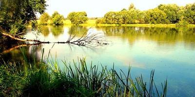 Фотографии и отзывы о коттеджном поселке «Салтыковские озера» (Раменский р-н МО)