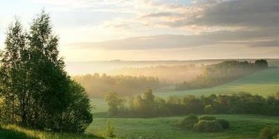 Фотографии и отзывы о коттеджном поселке «Лето» (Истринский р-н МО)